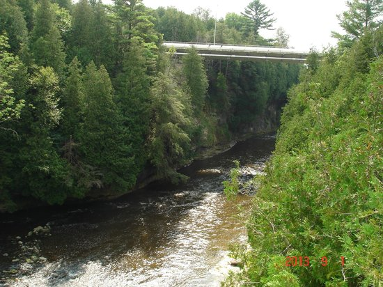 Elora Gorge Conservation Area: The gorge