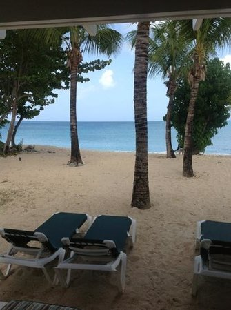 Barrymore Beach Club: Galley Bay Beach