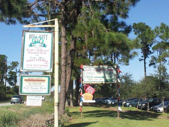 Long & Scott Farms: entrance sign