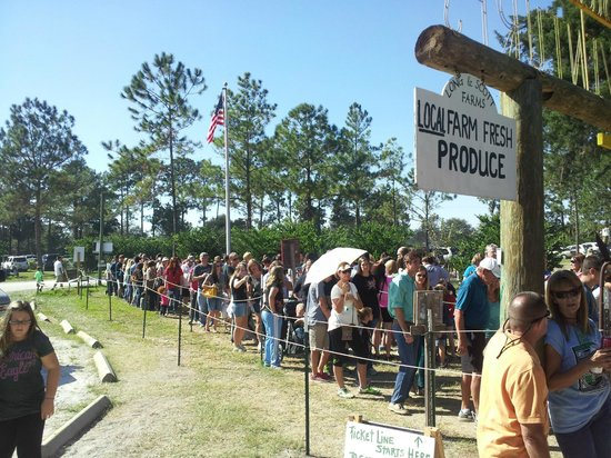 Long & Scott Farms: The line to get in at 3pm (farm & maze closes at 5pm)
