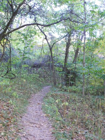 Weston Bend State Park: Trail at the park