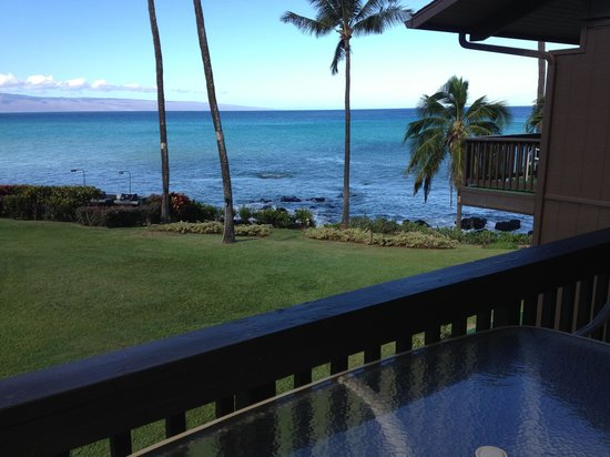 Mahina Surf: view