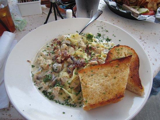 Wild Duck Cafe: Chicken gorgonzola pasta