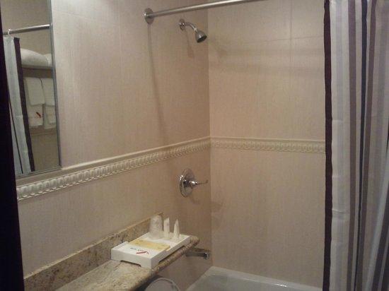 Asiatic Hotel - Flushing: Clean Bathroom