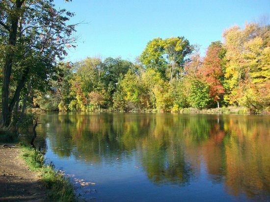 Cleveland Metroparks: Beyer's Pond