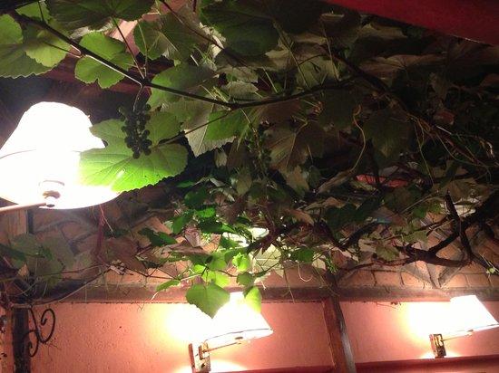 La Boussole: Ceiling
