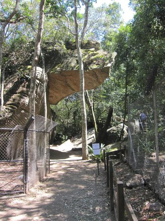 Shoalhaven Zoo : Hanging rock walk.