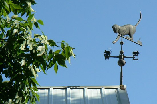 Carlson Vineyards Winery & Tasting Room: Carlson Vineyards weather vane