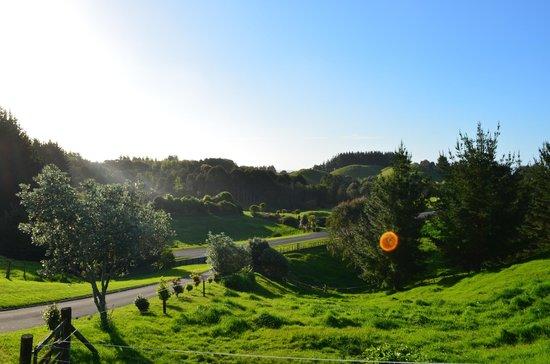 Vista del Sol: View