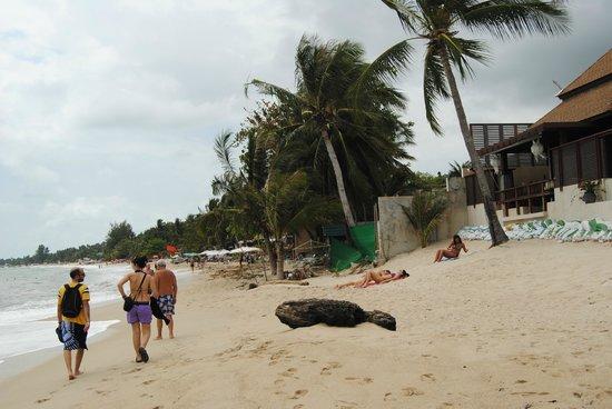 Lamai Coconut Beach Resort: Lamai beach