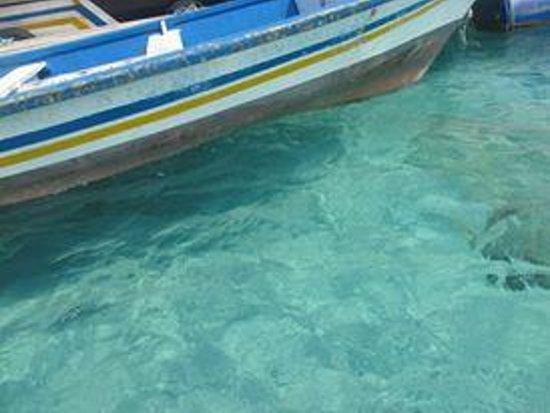 Arwana Perhentian Eco Resort & Beach Chalet: crystal clear water!