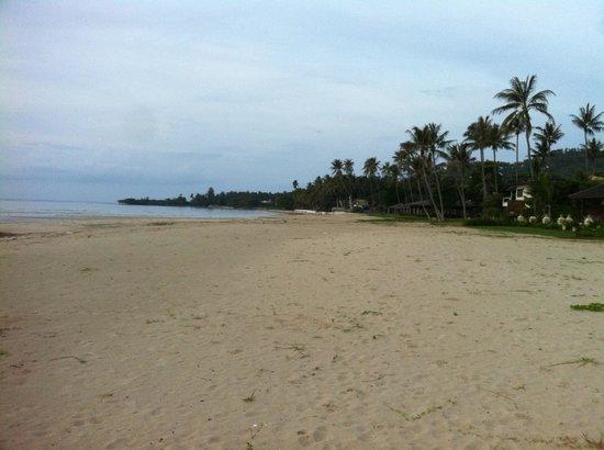 Shiva Samui: Perfect Samui beach village