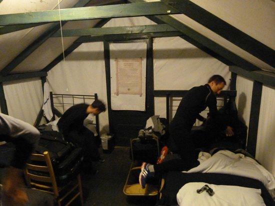 Half Dome Village : Inside Tent