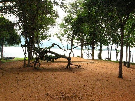 Amaya Lake : BBQ area