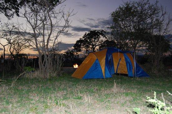 Watu Safaris: Camp in Mikumi