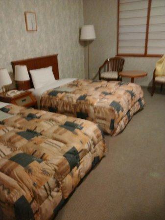 Comfort Hotel Komatsu: ツインルームです