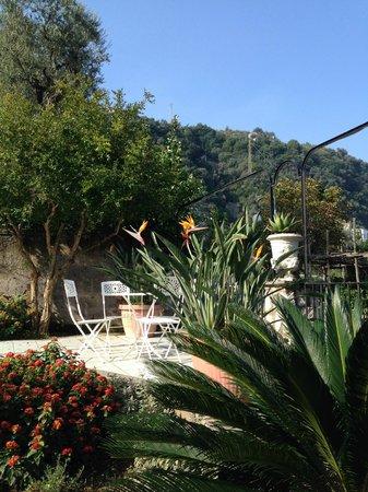 Villa Adriana Guesthouse Sorrento: Dining area in the garden.