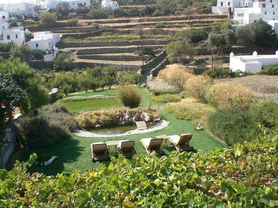 Myrto Hotel: Autre vue depuis le balcon de mon bungalow