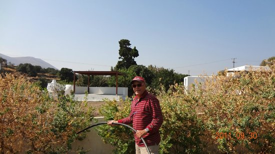Myrto Hotel: Giannoulis qui arrose le jardin des Bungalows Myrto