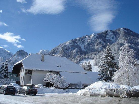 Brezov Gaj: winter 4