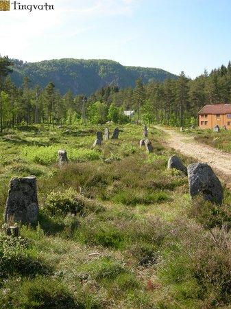 Tingvatn Prehistoric Park