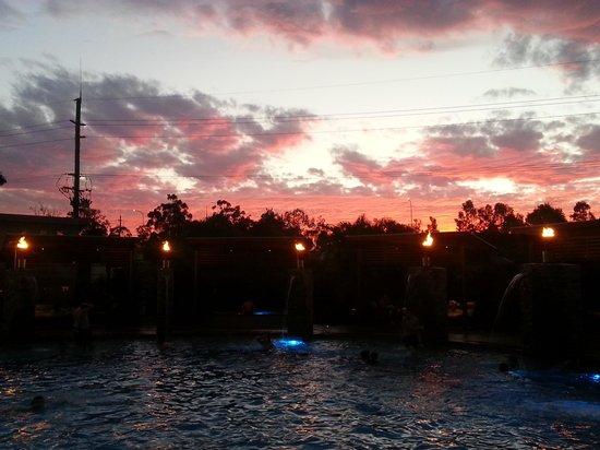 BIG4 Gold Coast Holiday Park & Motel: pool at night