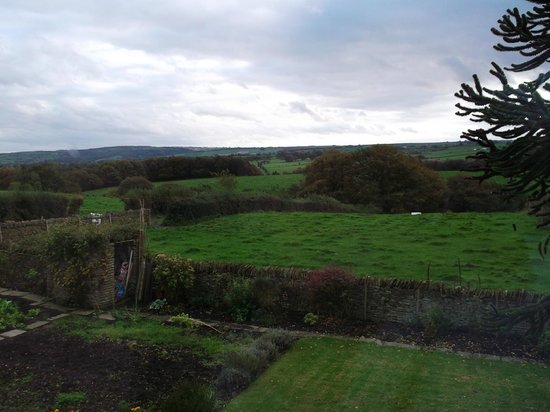 Cowclose Farm: View from Orchid bedroom window
