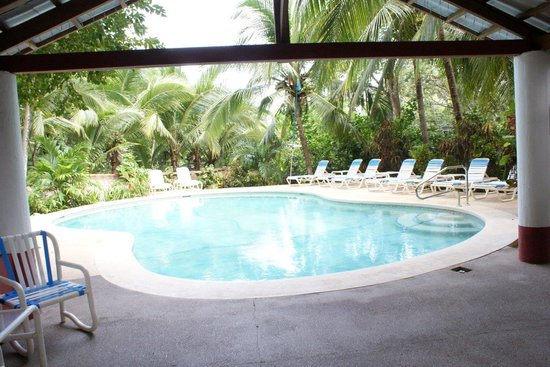 Hotel Lagarta Lodge: Pool
