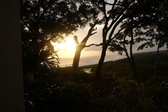 Hotel Lagarta Lodge: View of the ocean
