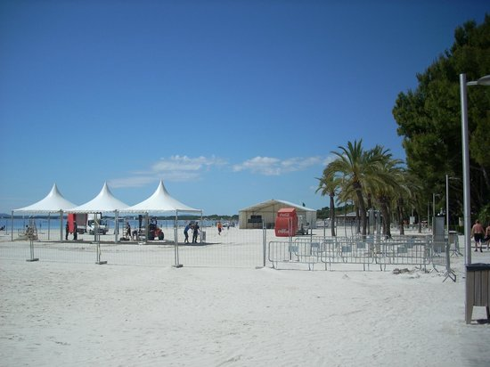 Playa de Alcudia: Sandy beach