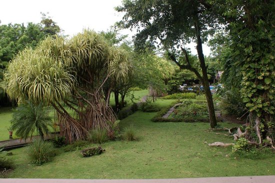 Karahe Beach Hotel : View of the garden