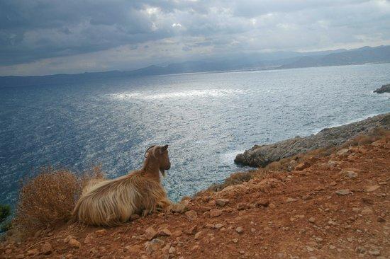 Kissamos, Yunanistan: Вид по дороге на Балос
