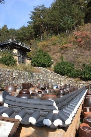 Jirye Artists' Colony: Kimchi harvesting