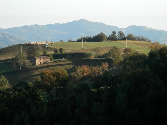 Agriturismo Lu Formaggio: Panorama dalla camera