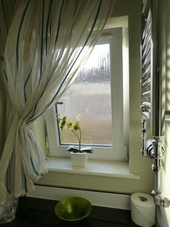 Abbeycraig Bed & Breakfast: Baño.