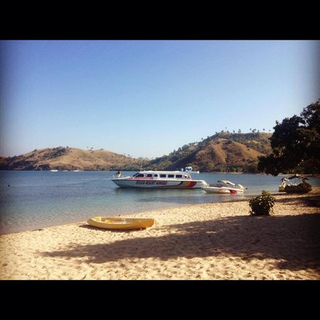 Sylvia Resort Komodo : Sylvia resort private beach
