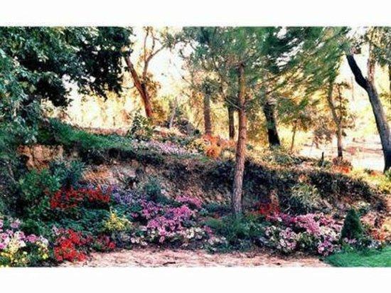 Navalpino, España: Jardín