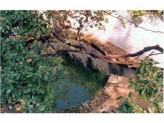 Navalpino, España: Baño termal árabe