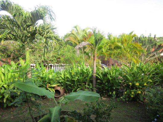 Habitation Bioche: jardin tropical
