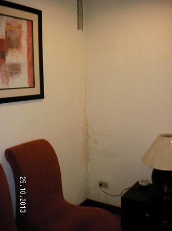 The Butchers Arms: disgusting room