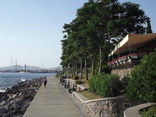 Mavi Park Restaurant: 7
