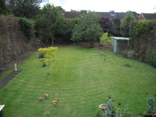 The White House Quality Bed & Breakfast: View of back garden view from family room
