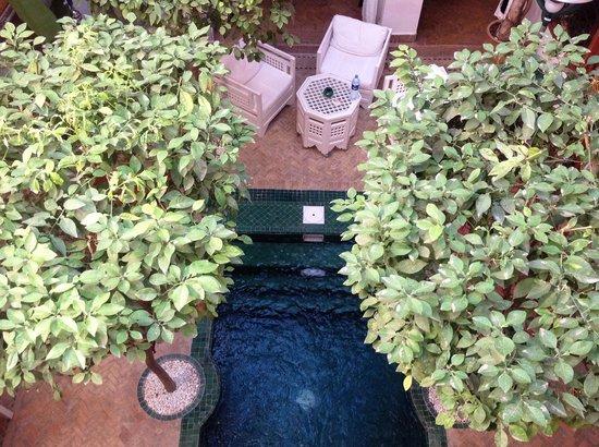Riad Sadaka: Le riad bénéficie d'un bassin piscine, dans le patio.