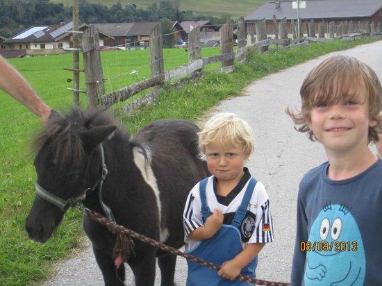 Kinderbauernhof Scharrerhof: Das Ponny will nicht so - wie ich will