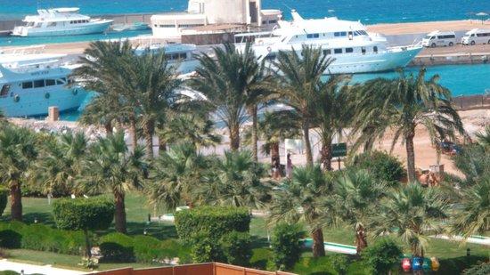 Jewels Sahara Boutique Resort: beautiful veiw from my room