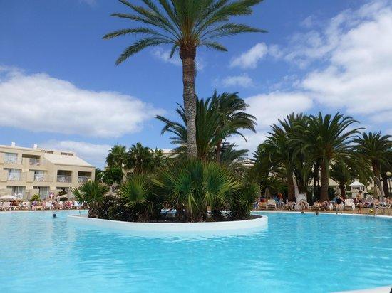 ClubHotel Riu Oliva Beach Resort : piscine