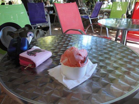 Jessie Gelato: Strawberry & coconut - yum!