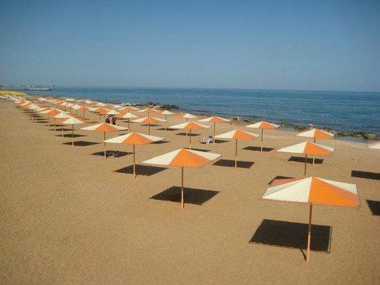 Alye Parusa Hotel: Пляж