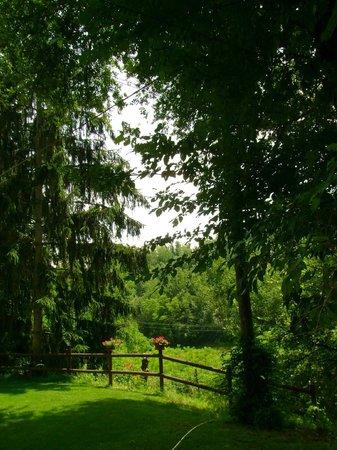 La Locanda della Sesta Felicita: in giardino
