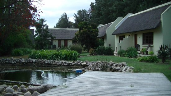 Rosedale Organic Farm B&B: Een deel van de tuin+accommodaties